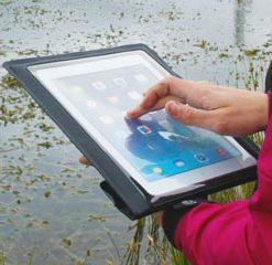 iPads & Kindles